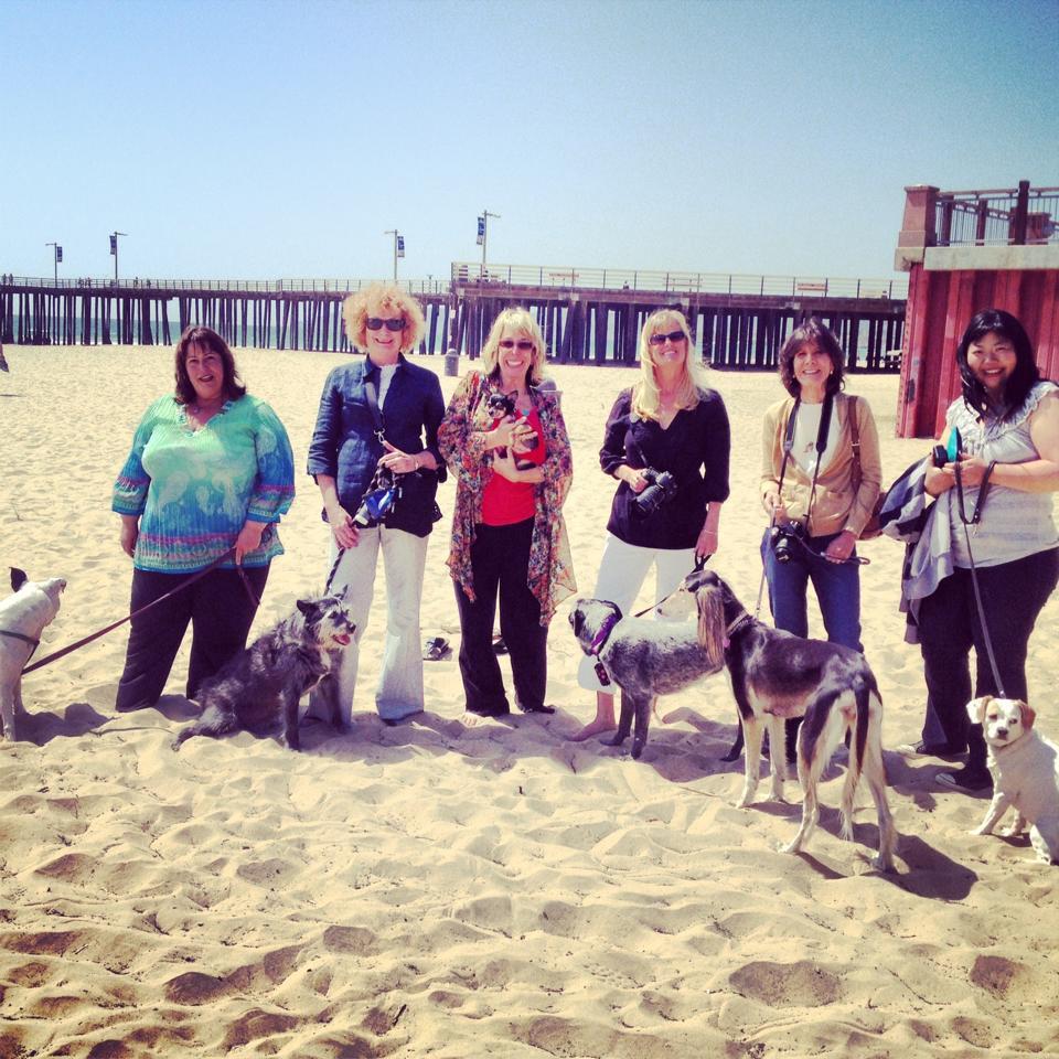 SLO Dog Press Trip - Pier